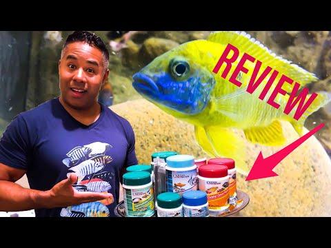 Fish Food Review