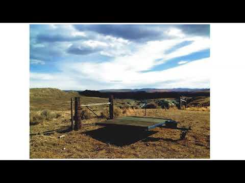 Ranch Zepp Dreaming