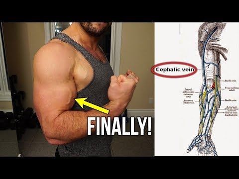 How to Get The Biceps Vein to POP-OUT (VASCULAR ARMS!!)