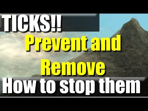 How to Prevent and Remove Ticks Safely | RevHiker