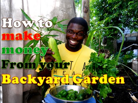 How to Make Money With Your Backyard Garden