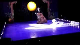 Disney On Ice in New Year's Day 2014: Lion King, Snow White, Aladdin