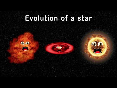 Stars for Kids/Stellar Evolution for Kids/Evolution of a Star