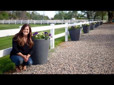 Planting up Our Self Watering Containers 💜💛 // Garden Answer
