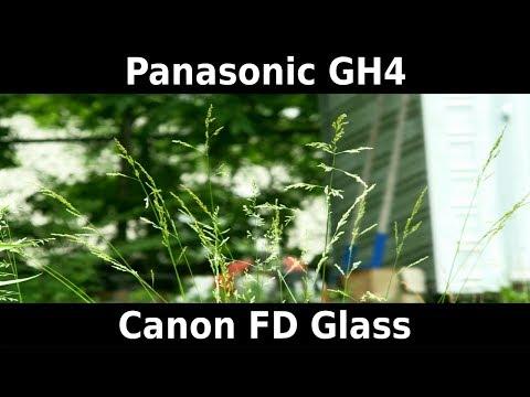 Panasonic GH4 & Canon FD Glass | Test Footage