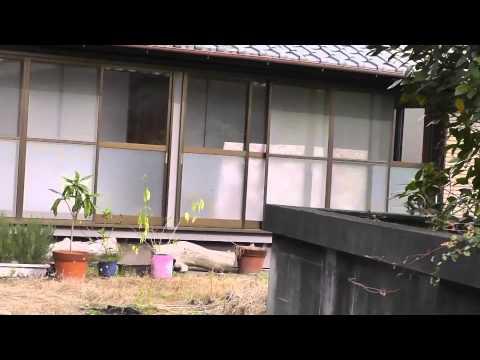 Japan farmhouse for sale $227,000.00 (2,252万日本円の販売のために日本が農家)  USD - softypapa adventures