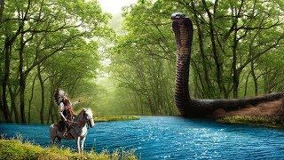 7 Giant and Deadliest Creatures Of Amazon