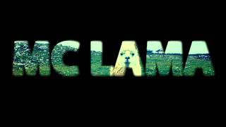 Mc Lama Vs Sense Of Tense | 16tel Finale | Grb Trainings