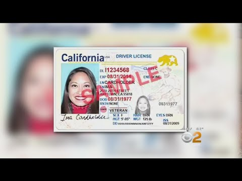 2 On Your Side: Real Headache For Real ID
