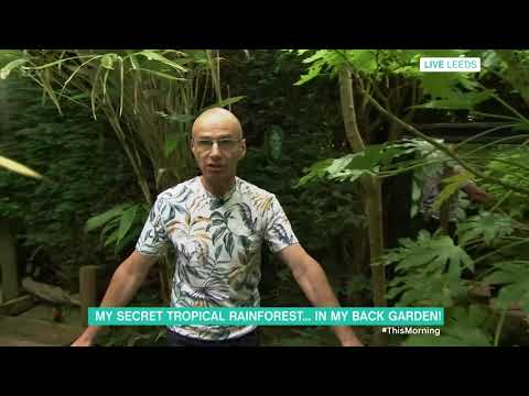 My Secret Tropical Rainforest in My Back Garden | This Morning