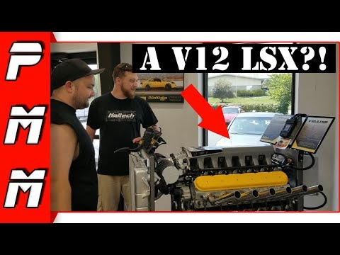 Exploring Haltech USA! This place is awesome! A V12 LSX Engine?!