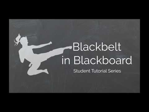 Changing Your Blackboard Password