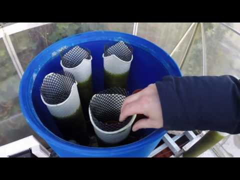 Brilliant DIY Filter - Explained and Cleaned