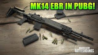 New PUBG Weapon MK14 EBR + Stream Sniping Drama | Battlegrounds