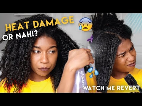 HEAT DAMAGE OR NAH!? Reverting Back To Curly After Revlon Hair Dryer Brush