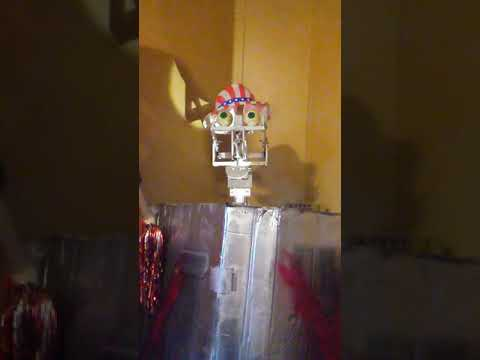 Looney Bird Robot/Animatronic - Show Selector Skit