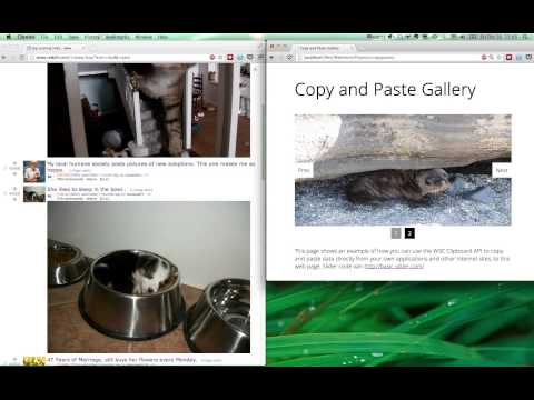 Use the W3C Clipboard API to cut and paste images from the clipboard
