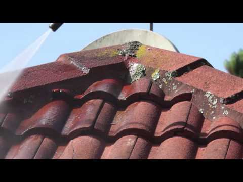 Concrete Roof — Waterblasting Moss (Step 1)