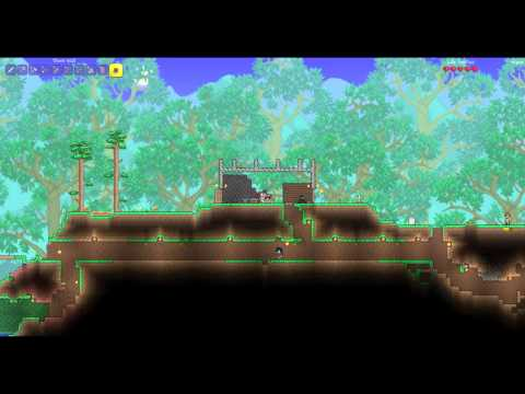 playing Terraria with my 5 year old on pc lan