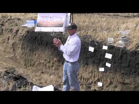 Building your soil structure