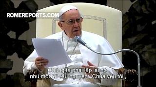 Đức Giáo Hoàng: Không có gì, không ai có thể lấy đi sự bình an rằng Chúa yêu thương chúng ta