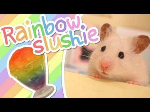 🌈 Rainbow Slushie | HAMSTER KITCHEN 🌈