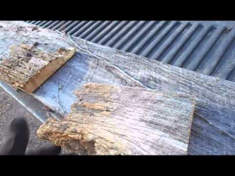 Saving Old Barn Wood that Looks Rotten, but Isn't