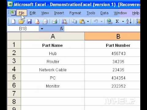 Microsoft Office Excel 2003 Preview a page before printing