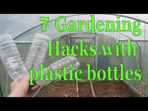 7 Gardening Hacks with Plastic Bottles - Simple, Free and Extremely Effective!