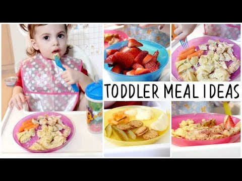 WHAT MY TODDLER EATS IN A DAY! || TODDLER MEAL IDEAS
