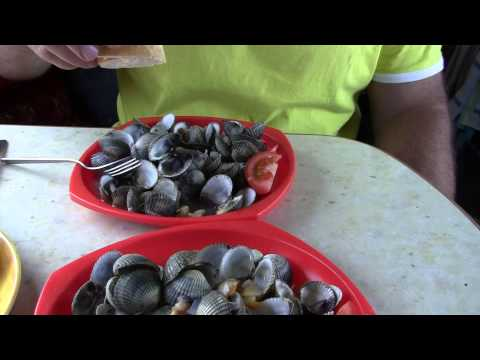 Cockle picking & cooking in France - part 3