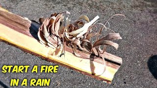 Fire Feather Stick