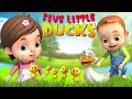 Five Little Ducks And Many More Baby Ronnie Rhymes Videogyan 3D Rhymes Kids Songs Baby Videos