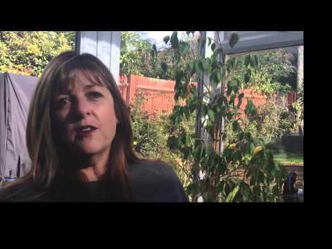 Support through Divorce Mediation: Caron Barruw