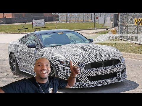 My 2019 Ford Mustang GT500 & How to List Your Property for Rent