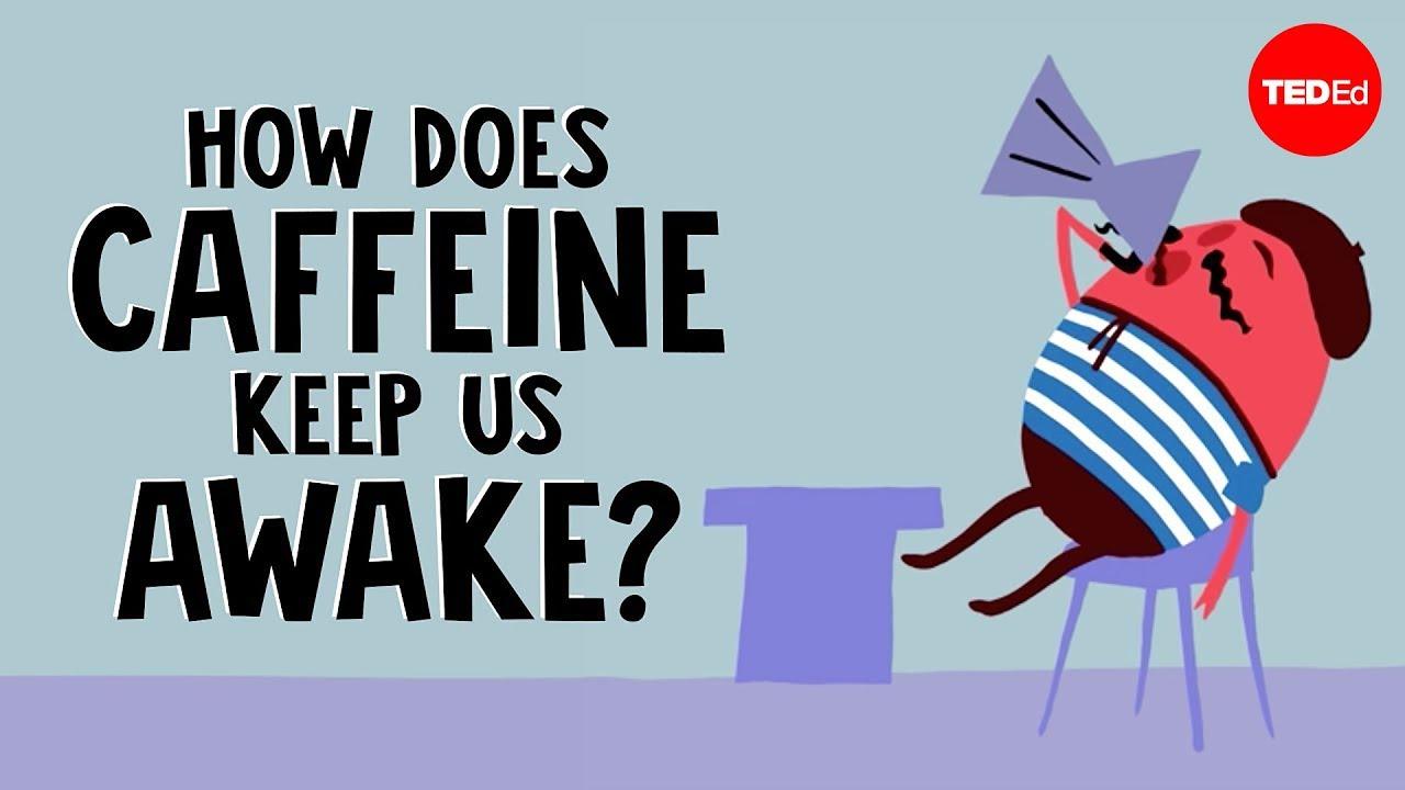 Download How does caffeine keep us awake? - Hanan Qasim MP3 Gratis