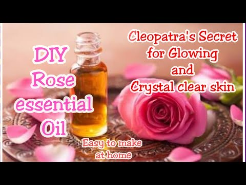 DIY Rose Essential Oil For Glowing, Youthful and Crystal Clear Skin / Cleopatra' beauty secret Oil