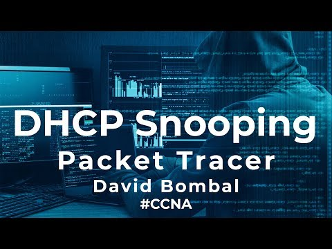 Cisco CCNA Packet Tracer Ultimate labs: DHCP Snooping: Answers Part 2