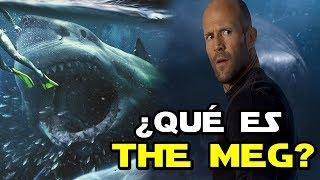 ¿Qué es THE MEG? La Nueva Película del MEGALODÓN
