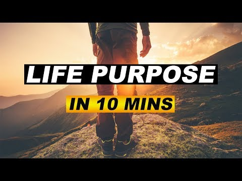 How To Find Your Companies Purpose: in 10 Minutes (2018)