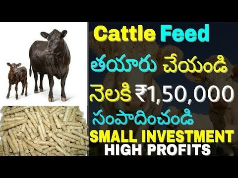 How to Start Cattle feed manufacturing business and earn   cattle feed making machine   in telugu