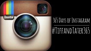 365 Days of Instagram | #TiffAndTater365
