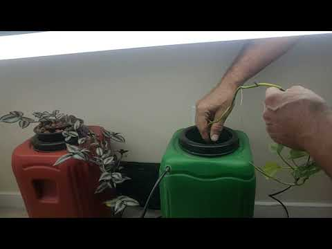 April 13, 2018 Vlog #94 Deep Water Culture Hydroponics update