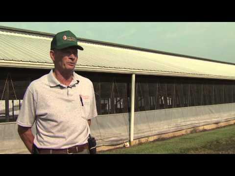 Ohio Pork Producers Council: Price Farms Organics