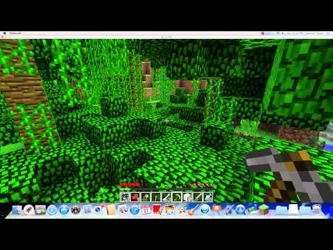 Minecraft- How to Tame Ocelots and Wolves