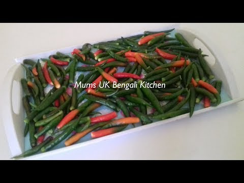 HOW TO PRESERVE GREEN CHILLIES