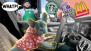 PUPPY DRIVE THRU PRANK! **FUNNY CHALLENGE**   The Royalty Family