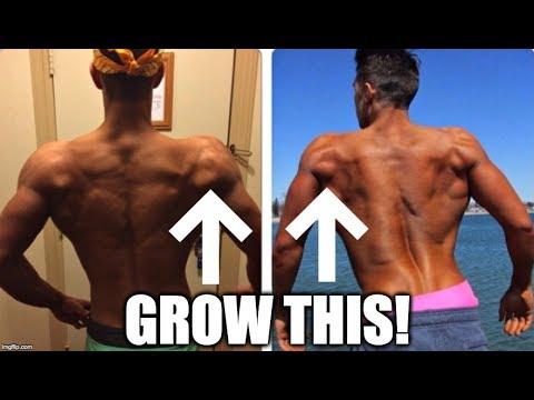 Best Shoulder Exercise for BIG Rear Delts
