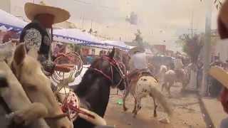 Pelea montados a caballos en la fiesta del pueblo