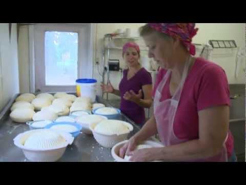 Market - Making Artisan Cheese at LoveTree Farm